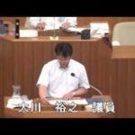 2013年6月議会 反対討論(慰安婦決議)