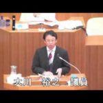 2014年9月議会 慰安婦決議討論